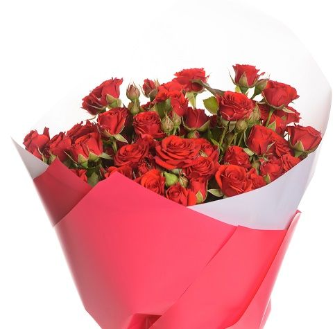 Bouquet of red bush roses flower delivery