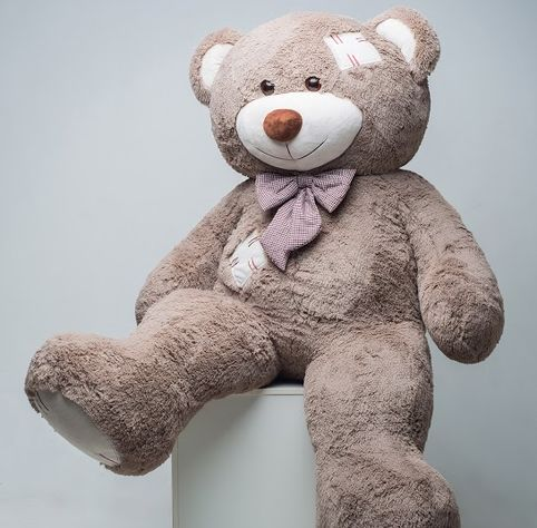 Mr. Bear with patches 200 cm cappuccino flower delivery