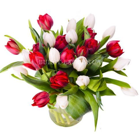 Bouquet of mixed tulips flower delivery